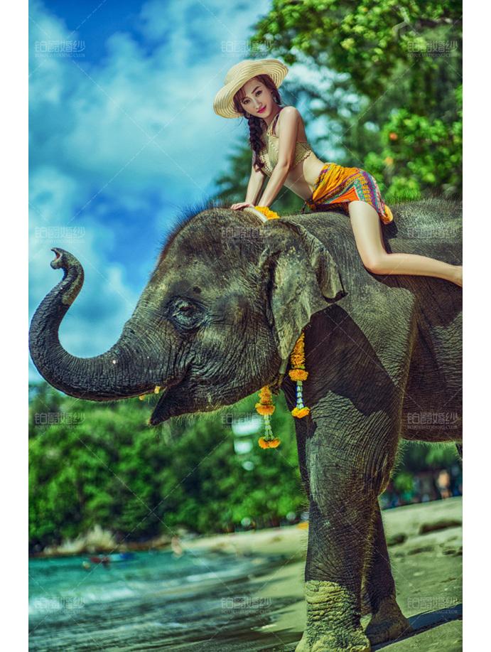 普吉岛07月客照之新娘与象