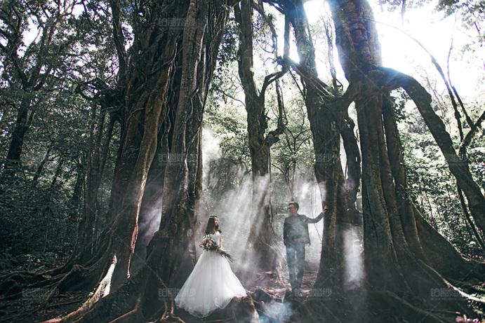 巴厘岛04月客照之森林依恋