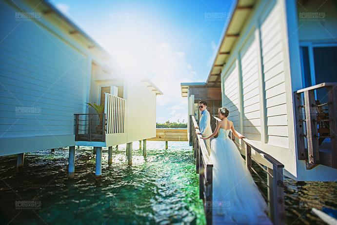 马尔代夫06月客照之屋外相伴