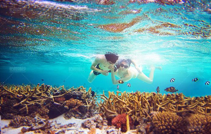 马尔代夫06月客照之潜水寻宝
