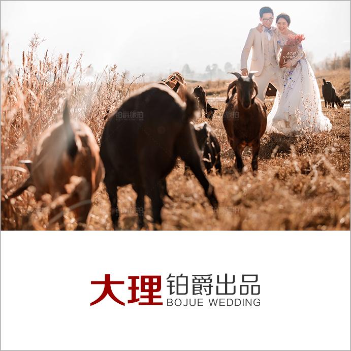 12月客照(三)最浪漫的草原