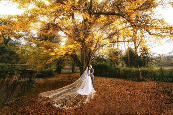 富贵奢华高贵欧式婚纱照