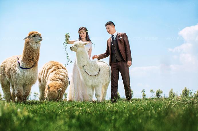 用我们的经历告诉你在大理旅拍婚纱照该选哪家
