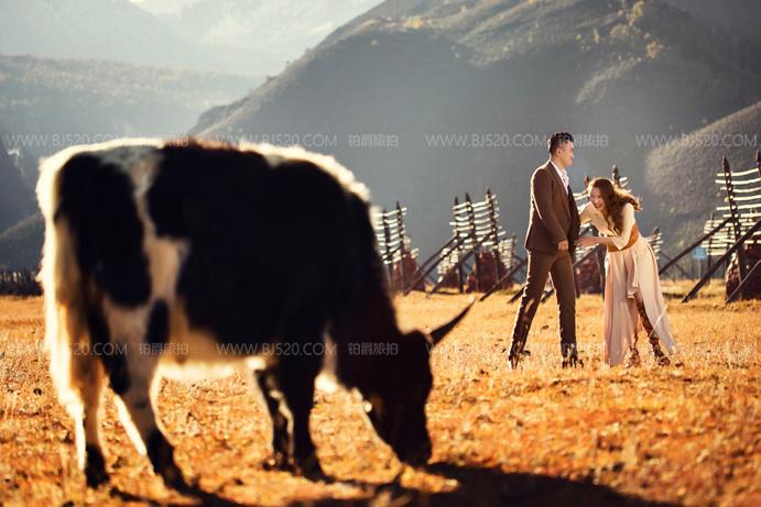 婚纱照相框用什么材质比较好 婚纱照相册取名介绍