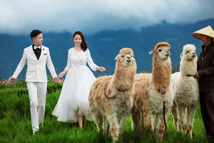 一次无憾的大理婚纱照拍摄之旅