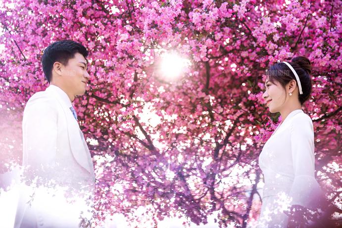 青岛拍一套婚纱照价格多少 青岛婚纱摄影大概多少钱