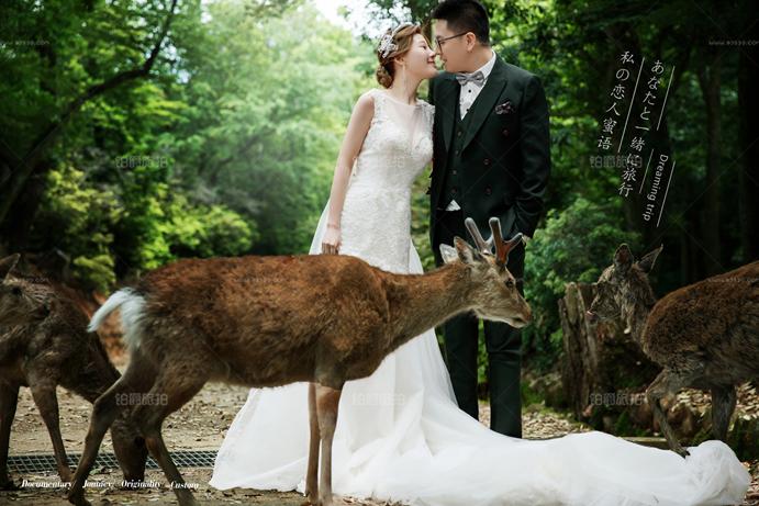 短发新娘子拍婚纱照的假发从哪里来