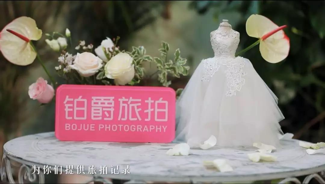 小S宋佳 领衔神仙阵容《小姐姐的花店》谈心落泪 秒变大型治愈现场