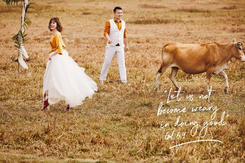 三亚铂爵旅拍婚纱照的惊喜体验