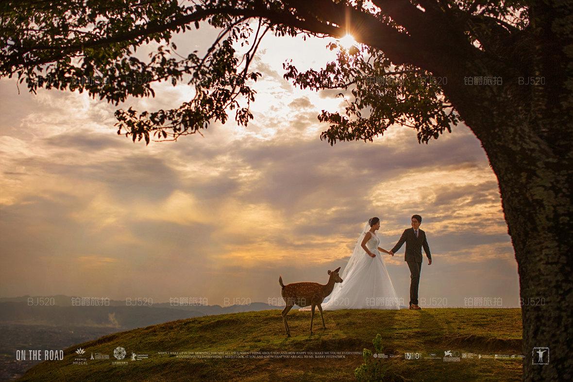选日本蜜月旅拍婚纱摄影机构,就要选铂爵旅拍