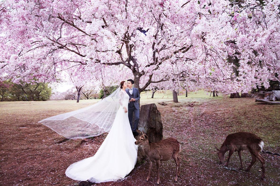日本蜜月旅拍婚纱摄影最浪漫的旅拍景点有哪些